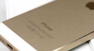 «Яндекс.Маркет» заблокируют за рекламу «серых» iPhone