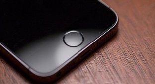 Производство Touch ID для iPhone 6 начнется во втором квартале