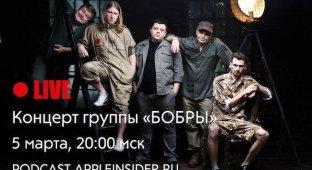 Прямой эфир концерта группы «Бобры»