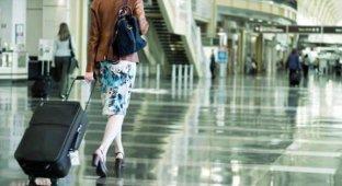 В Сочи работника аэропорта укравшего iPad из багажа пассажира посадили на один год