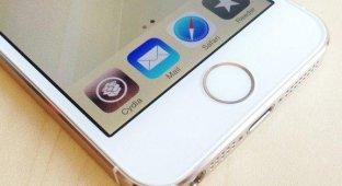 Создатель «вечного» джейлбрейка будет работать в Apple