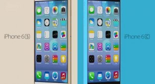 iPhone 6 против iPhone 6c: сравнение дизайна смартфонов