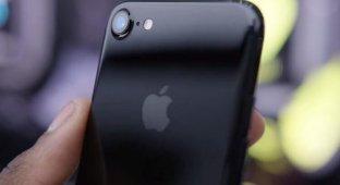 iPhone 7 в России подешевел почти вдвое со старта продаж